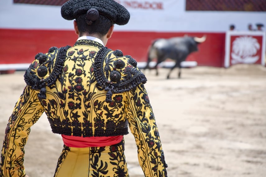 Bullfight Best In Spain