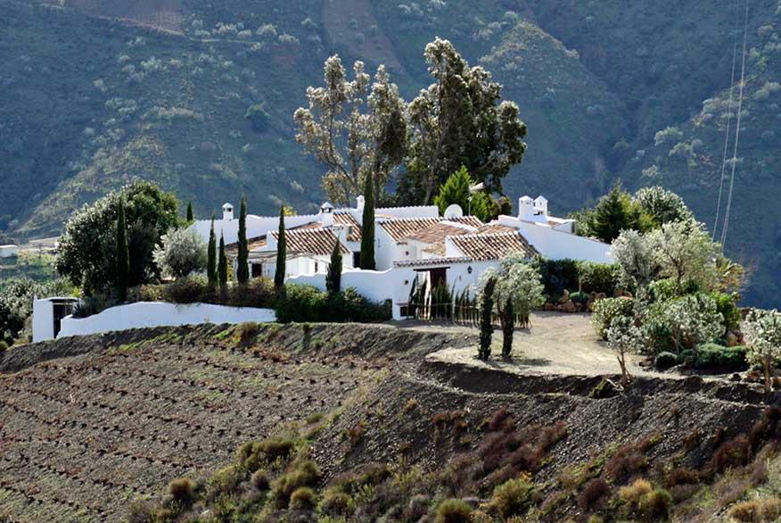 El-Cortijo-Carligto